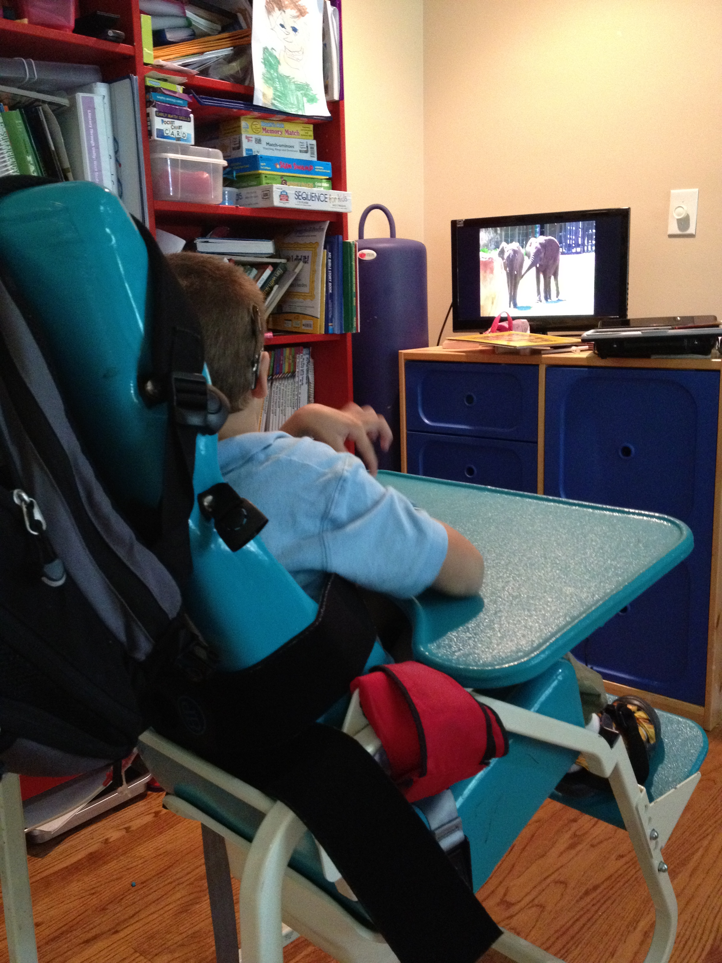 """Toilet """"Training"""" Wheels Adventures with my Non verbal Child"""