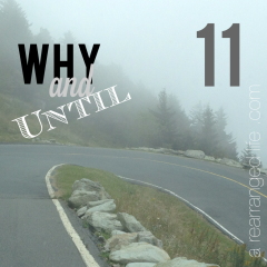 Why and Until in grief